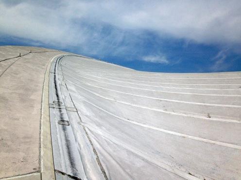 Dorton Arena Roof